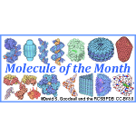 Monthly articles of molecule introduction