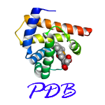 Introduction about the protein and PDB