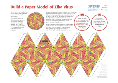 Papermodel of Zika virus